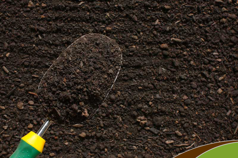 Topsoil d finition what is for Organic soil definition